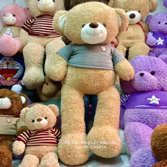 Gấu Teddy nâu lông xù HQ 1m8