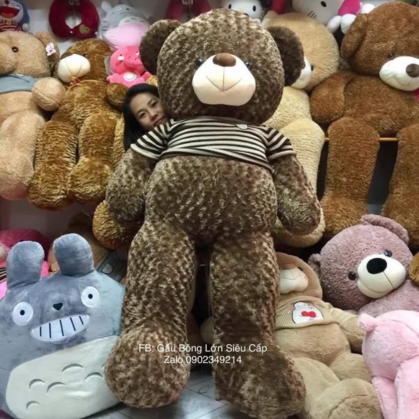 Gấu Teddy lông xoắn cao cấp