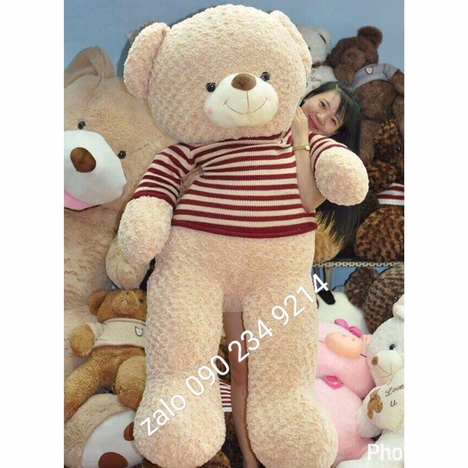 gấu bông teddy cafe sữa 1m9