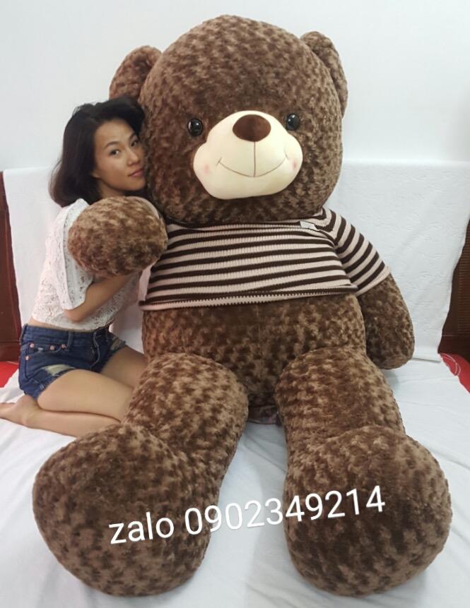 Gấu bông Choco Thái Lan cao cấp