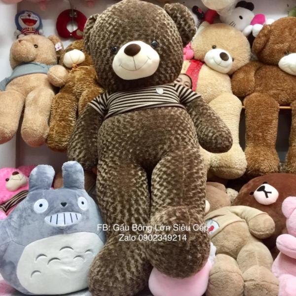 Gấu teddy lông xoắn 2m2