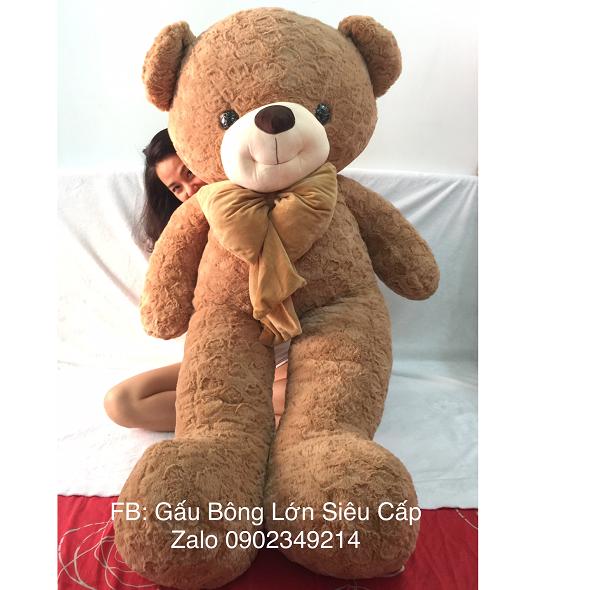 Gấu bông lông tim nơ nâu 1m8