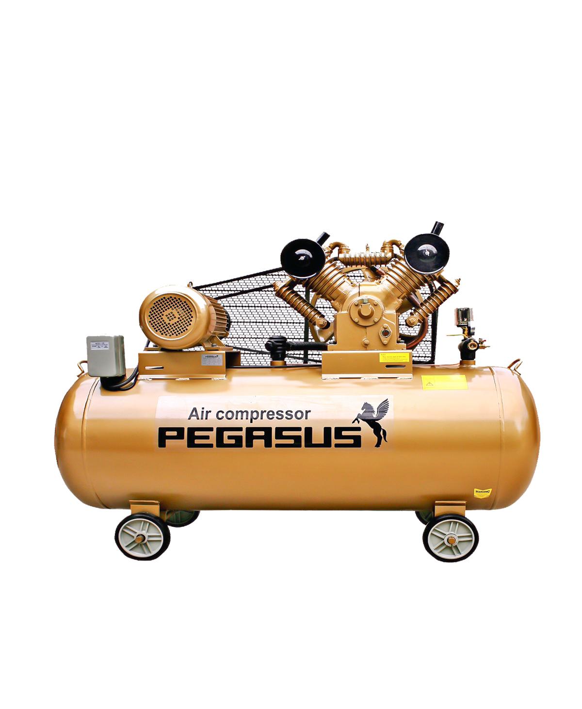 Máy nén khí dây đai PEGASUS TM-V-0.25/8-120L ( 380V )
