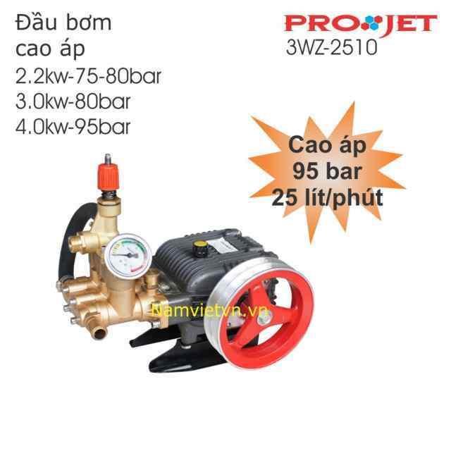 Đầu bơm rửa xe cao áp 3WZ-2510