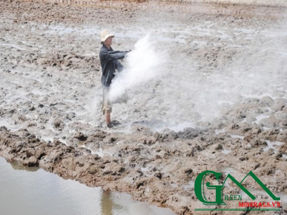 Bón vôi cho đất đem lại nhưng lợi ích và tác hại gì?