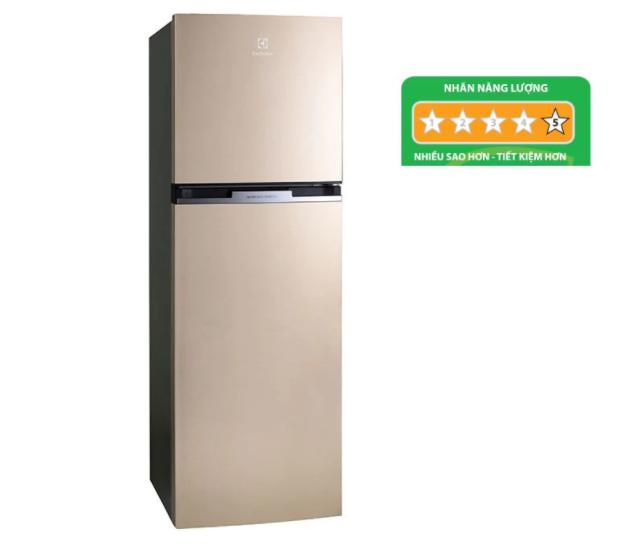 Tủ lạnh Electrolux ETB3200GG tồn tại