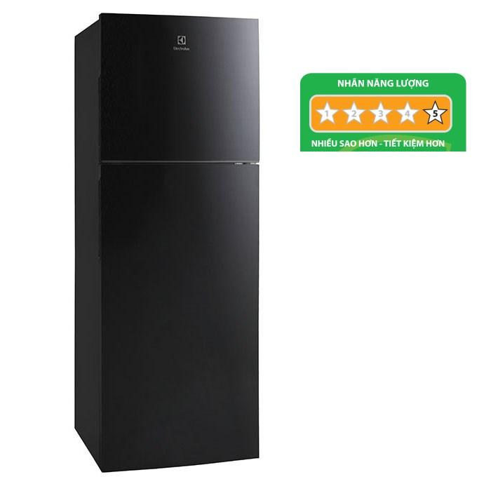 Tủ lạnh Electrolux ETB2302BG tồn tại