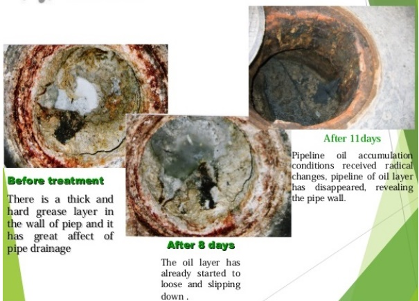 BIO-FG 3 IN 1 - Vi sinh xử lý dầu mỡ, bẫy dầu mỡ tắc nghẽn đường ống