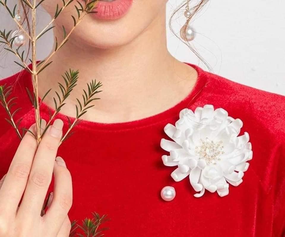 Hoa bạch cúc cài áo