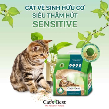 CÁT GỖ VỆ SINH CAT'S BEST SENSITIVE
