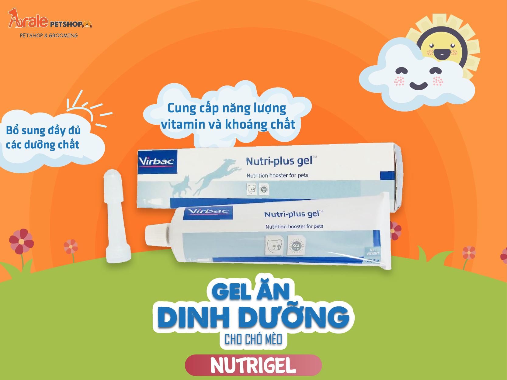 GEL ĂN DINH DƯỠNG CHO CHÓ MÈO - NUTRIGEL là loại gel dinh dưỡng cho chó phổ biến nhất trên thị trường hiện nay. Sản phẩm được sản xuất bởi hãng thuốc thú y Virbac nổi tiếng của nước Pháp.