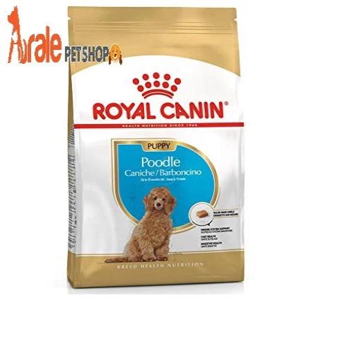 thức ăn cho chó poodle, giúp chó phát triển tốt hơn, bổ sung dinh dưỡng cần thiết cho chó