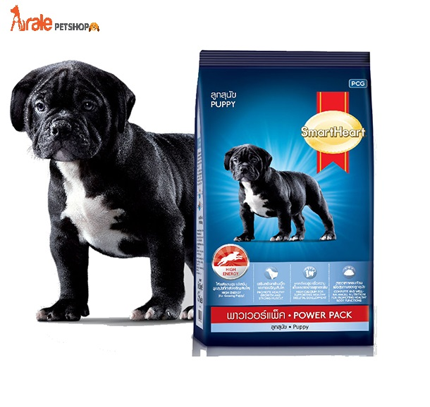 SMARTHEART POWER PACK PUPPY CHÓ CON