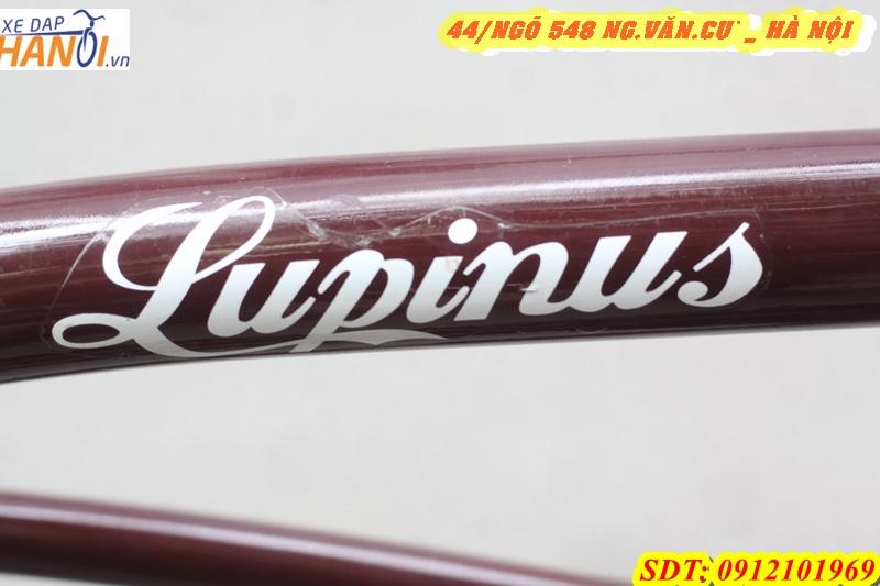 Xe đạp thể thao bãi biển LUPINUS ĐẾN TỪ JAPAN-