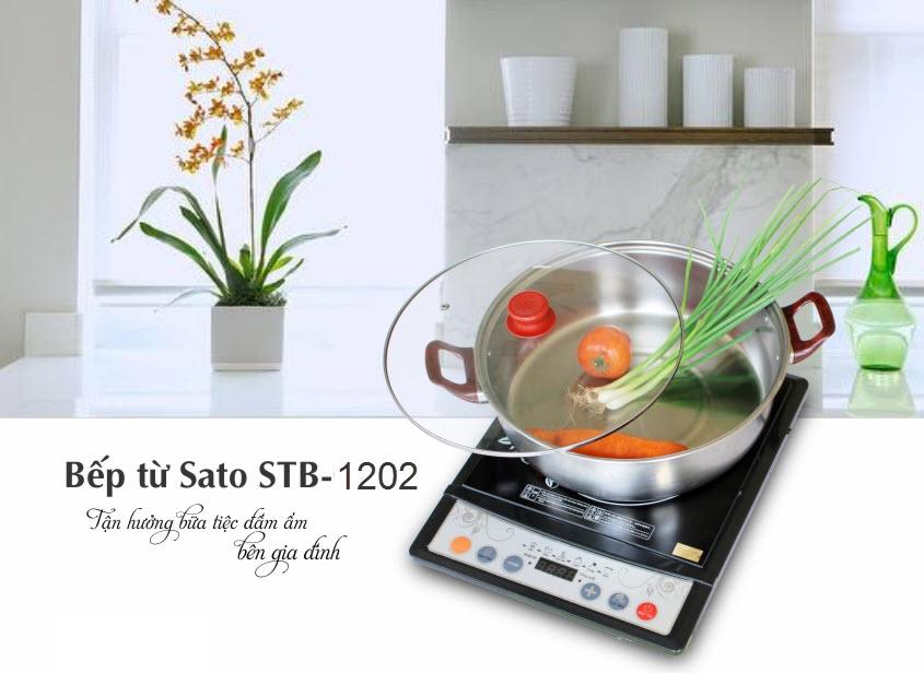 Bếp từ Sato Model STB-1202 - 01