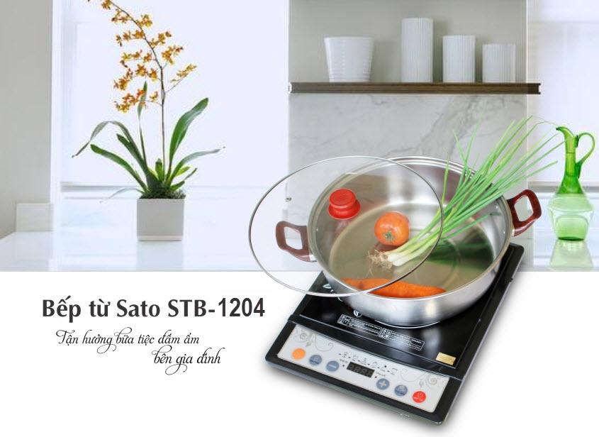 Bếp từ Sato STB-1204