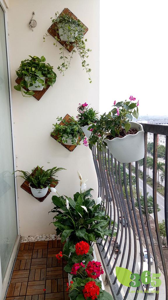 Ban công chung cư tận dụng trang trí tường