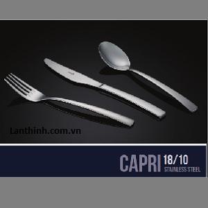 CAPRI 18/10 Stainless Steel