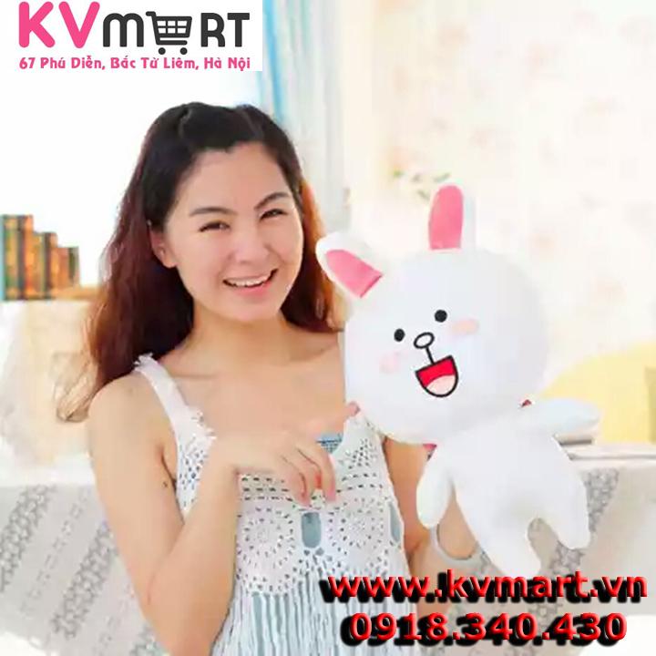 Gấu Brown và Thỏ Cony nhồi bông size 35 cm