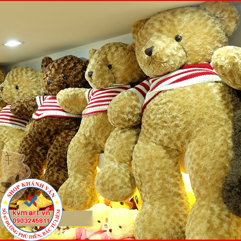 Gấu Áo Len Trung