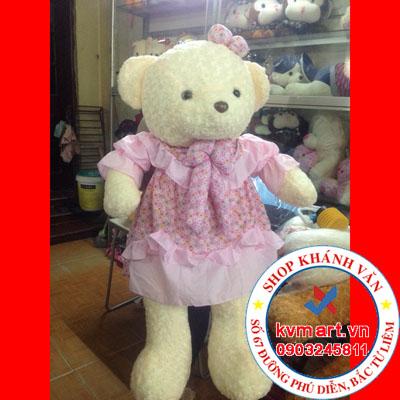 Gấu Teddy váy hồng nơ