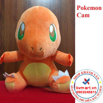 Pokemon Cam