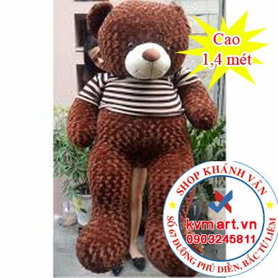 Gấu Teddy Cafe - 1.4 m