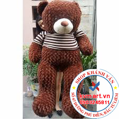 Gấu Teddy Cafe 1m8