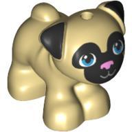 Dog - Cún con Pug