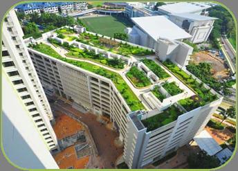 Ontop Building Landscape
