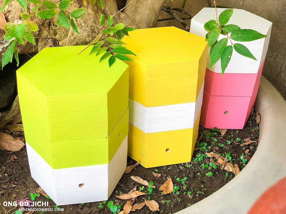 tổ ong dú làm kiếng và thụ phấn cho vườn cây ăn trái