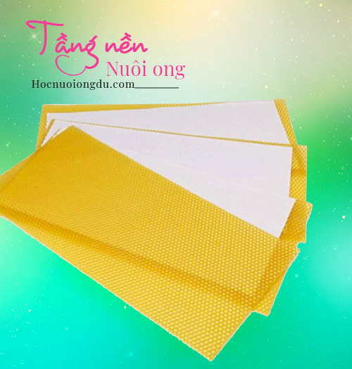 Tầng nền nuôi ong mật, Beeswax Foundation
