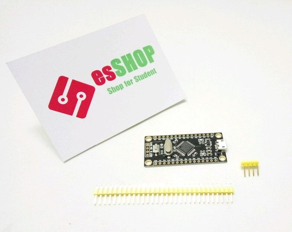 B0329 - Board Phát Triển ARM STM8S105K4T6