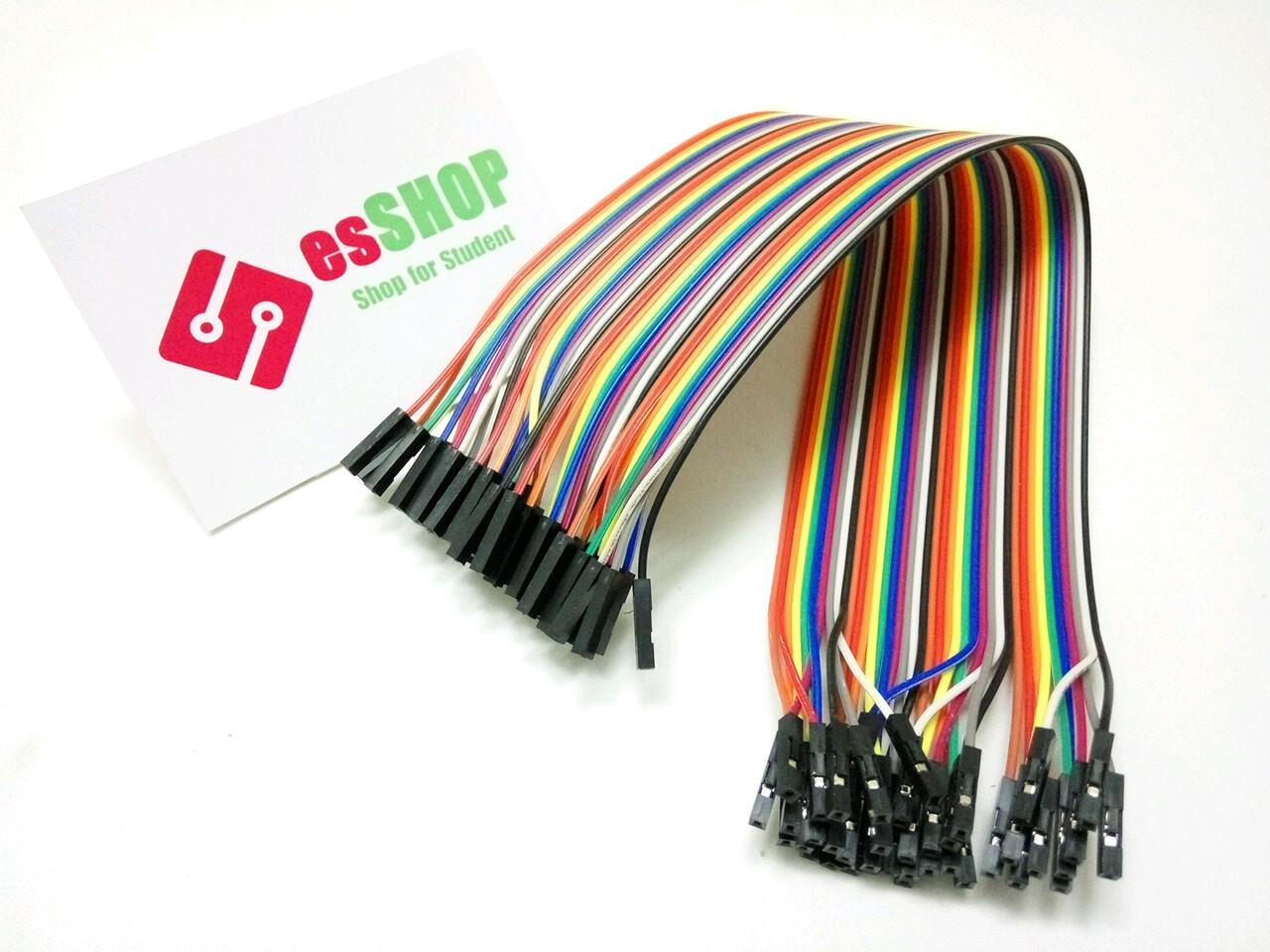 C0131 - Dây Cắm Testboard Cái-Cái 30 cm - 40 Sợi