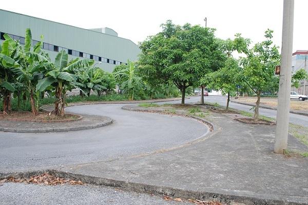 Bài tập tạm dừng đỗ xe ở sân tập lái của trung tâm