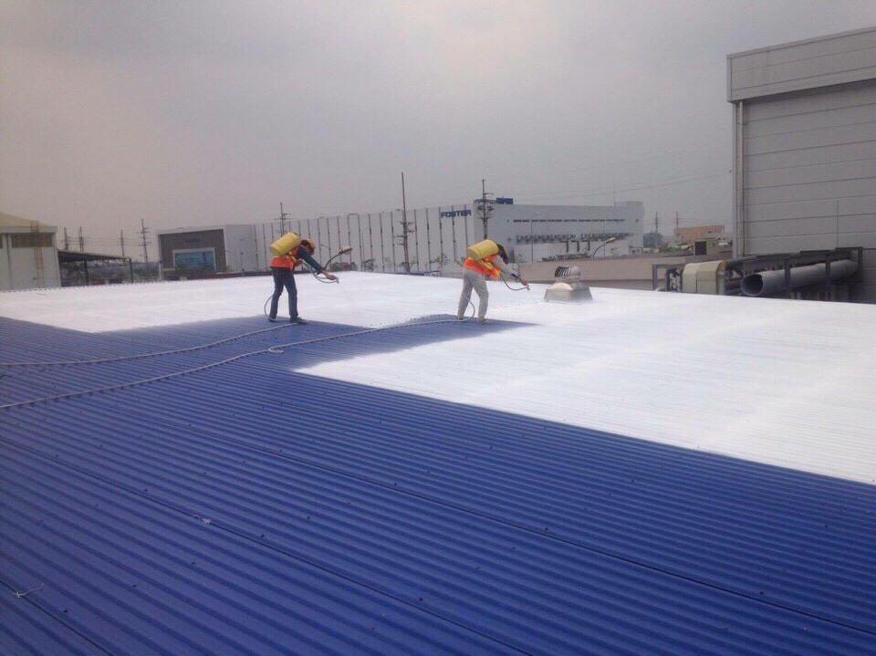sửa chữa bảo trì mái tôn