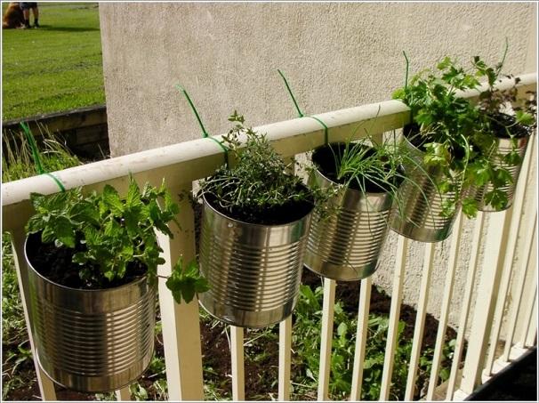 lan can kết hợp trồng rau