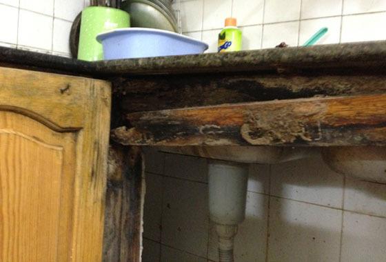 Tủ bếp gỗ bị mối mọt tấn công