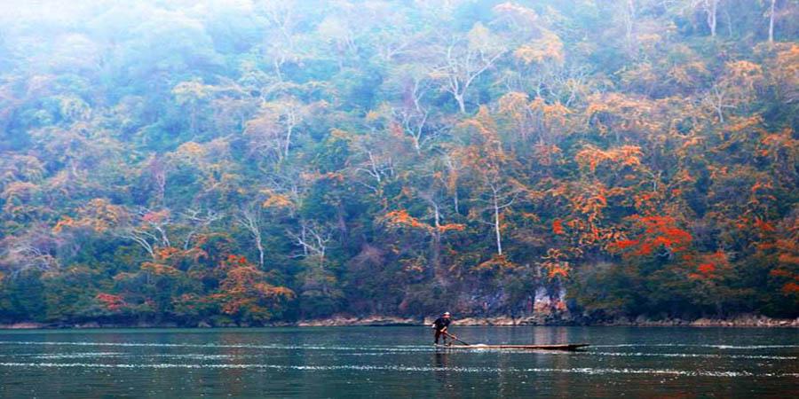 du lịch hồ ba bể mùa thay lá