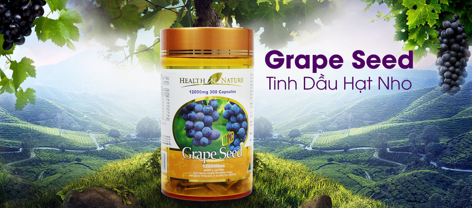 Health N Nature Grape Seed 12000mg - Tinh dầu hạt nho