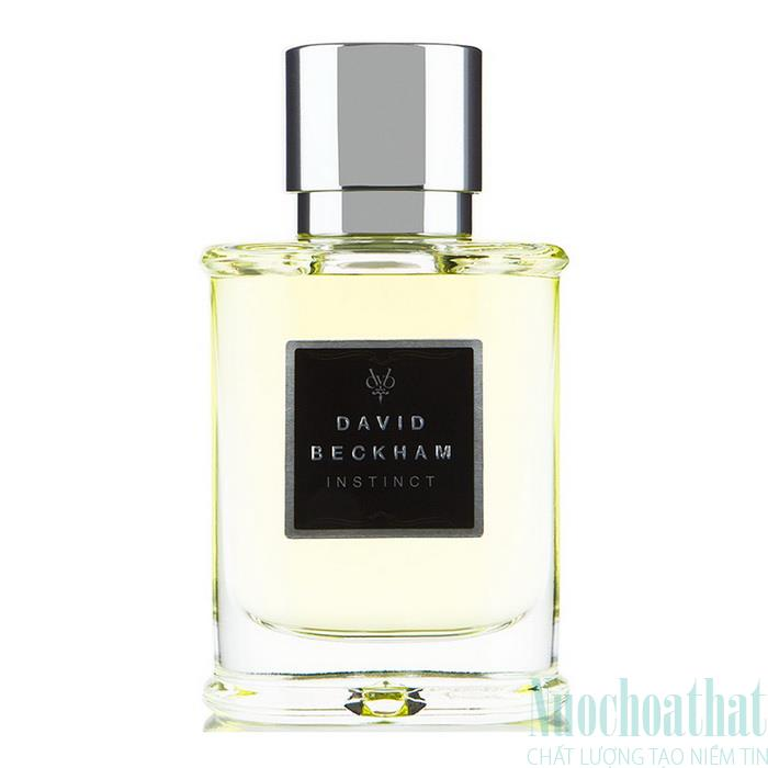 DAVID BECKHAM INSTINCT EAU DE TOILLETE...