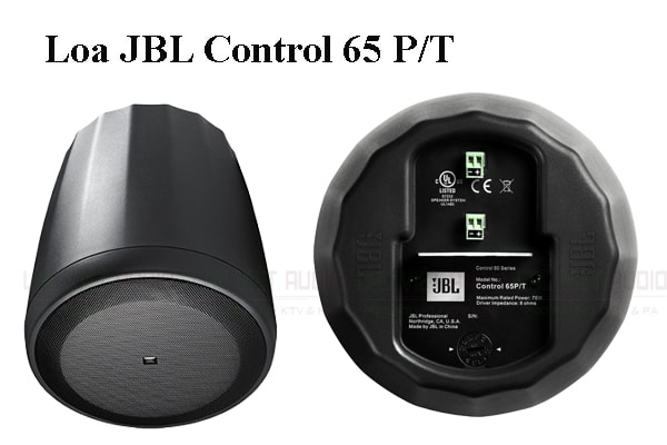Loa JBL Control 65P/T