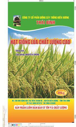 sản xuất bao bì giấy tại Hà Nội