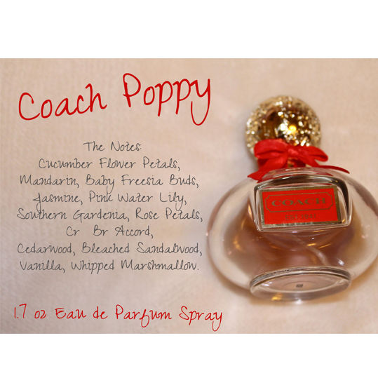 Coach Poppy For Women