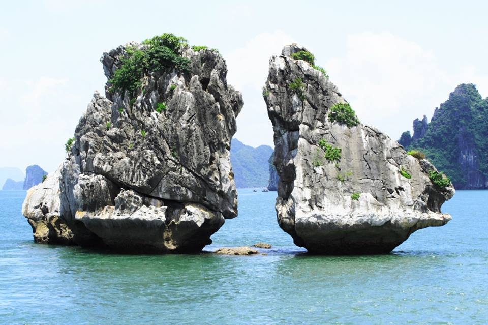 Hanoi - Ha Long Bay Private Transfer by 7 Seats MPV