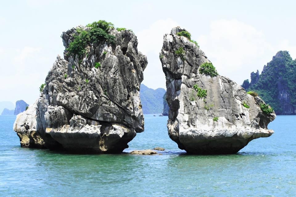 Hanoi - Ha Long Bay Private Transfer by 7 Seats MPV