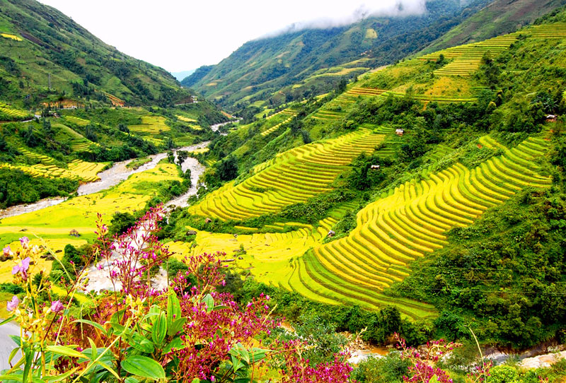 Sapa - Bac Ha Market 3 Days 2 Nights by Bus