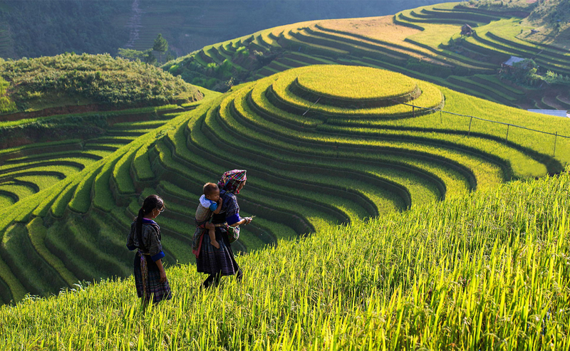 Sapa Tours 3 Nights 2 Days By Train