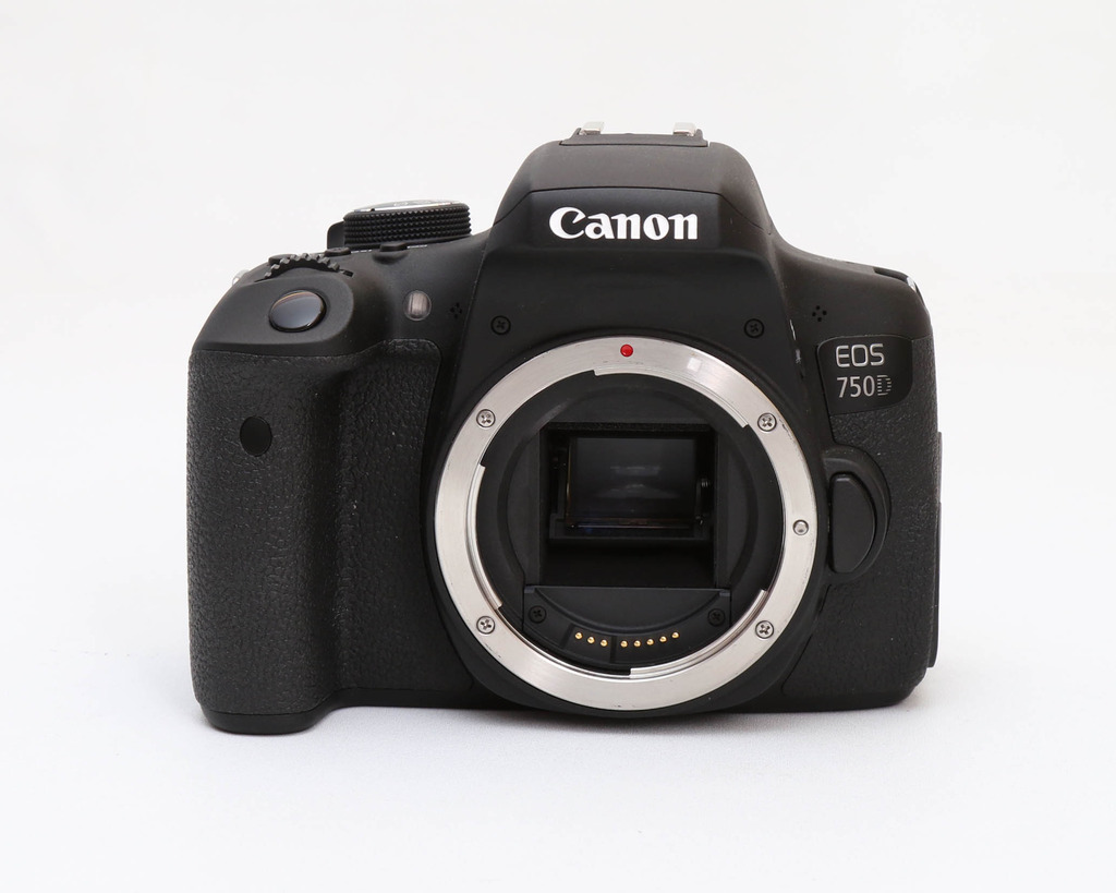 Canon EOS 750D / Kiss X8i + Lens 18-55 IS STM
