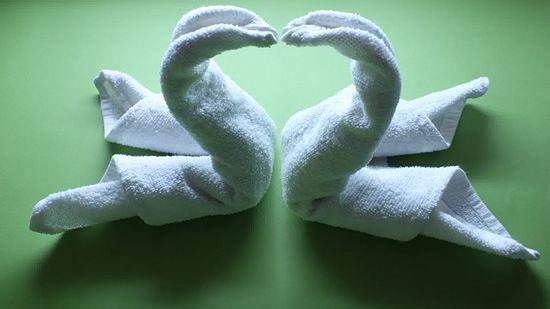Bước 5 gấp thiên nga bằng khăn phòng tắm